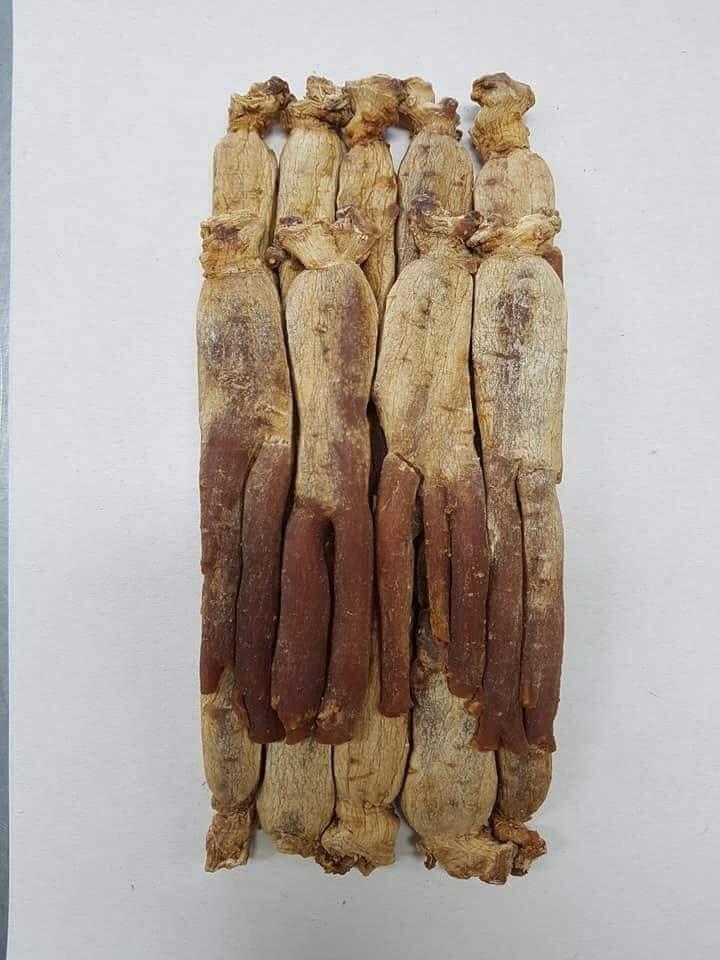 Hồng sâm nguyên củ Hàn Quốc cao cấp 6 năm tuổi hộp sắt 600g 11-20 củ