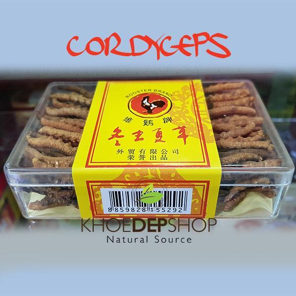 Đông Trùng Hạ Thảo Tây Tạng nguyên Con hiệu Rooster Brand
